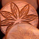 Trastorno por dependencia al cannabis