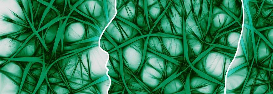 tourette - El síndrome de tourette
