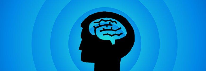 cerebro - Completo documental sobre el cerebro