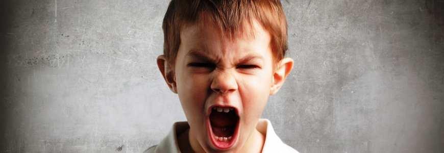 trastorno negativista desafiante - El trastorno negativista desafiante