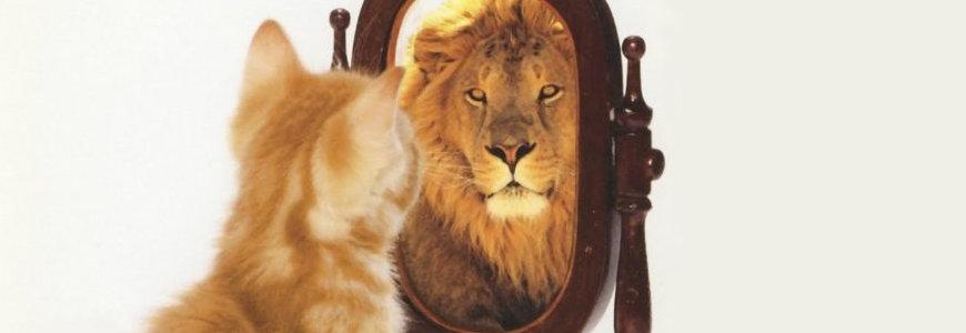 autoestima - Las personas con autoestima elevada son más felices: La base de una buena terapia psicológica